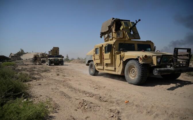 Iraagi julgeolekujõudude sõidukid Falluja lähistel.