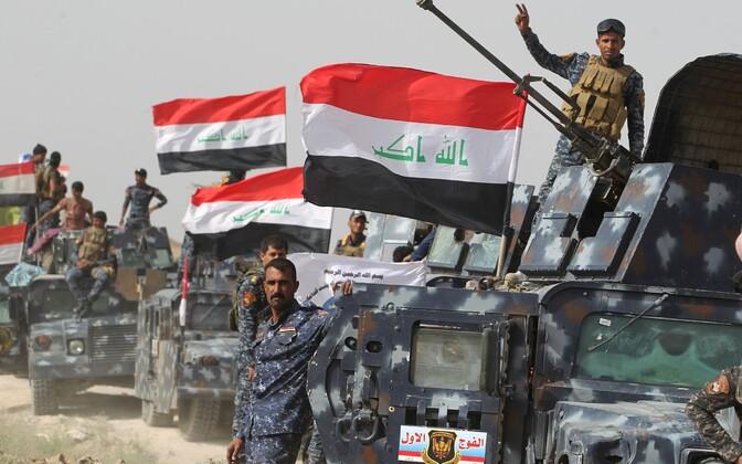 Iraagi valitsusväed Fallujah' lähistel 24. mail.
