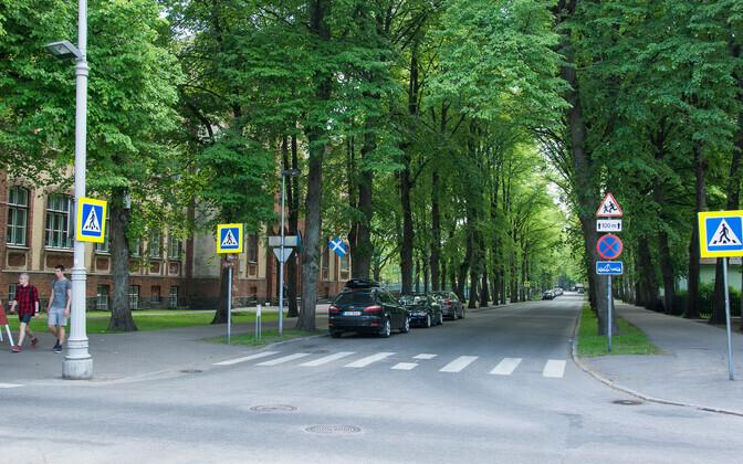 Pärnus juhtunud liiklusõnnetuses jätsid sõbrannad 14-aastase tüdruku abitus seisundis maha. Foto ei ole õnnetusega seotud.