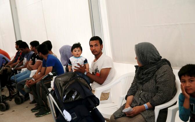 Беженцы и мигранты.