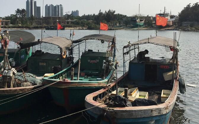 Hiina kalurite paadid.