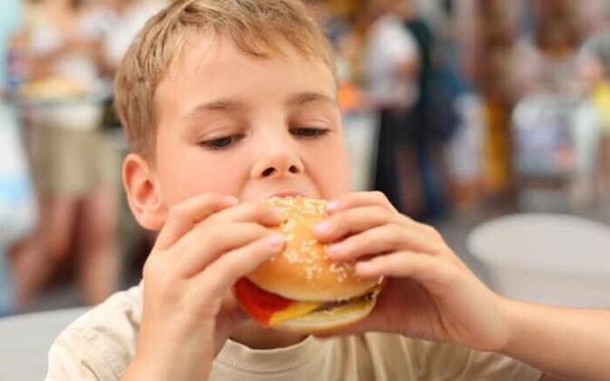 Laps hamburgeriga
