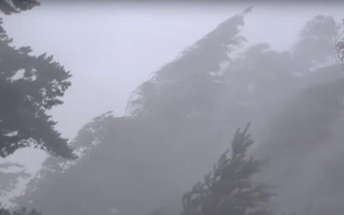 Juulikuine torm Tartus, video stoppkaader.