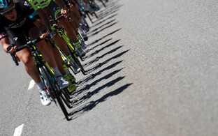 Jalgrattasport.