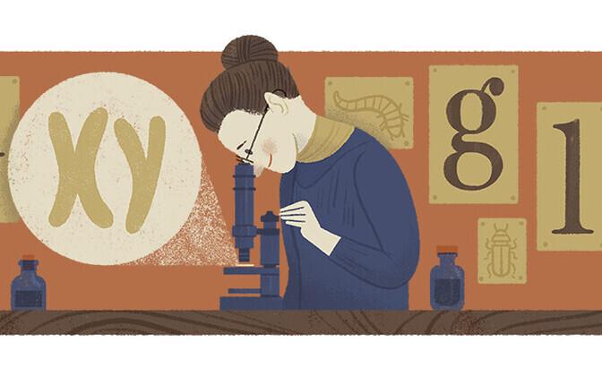 Nettie Stevensile pühendatud Google'i teemapilt.