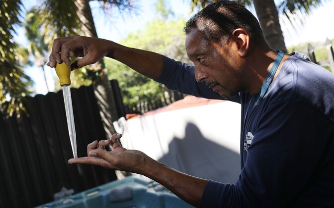 Florida ametnik kohalikke moskiitosid uurimas.
