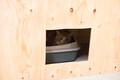 Tallinna loomade varjupaik avati uues asukohas Paljasaarel