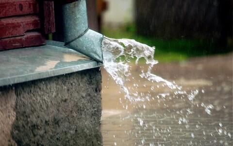 Vihm Tartus.