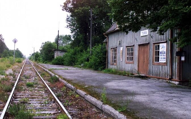 Turba rongijaam.