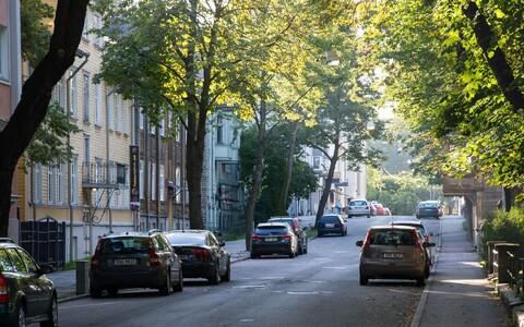 Laupäeval muundub Koidula tänav Kadriorus kirjanduse Mekaks.