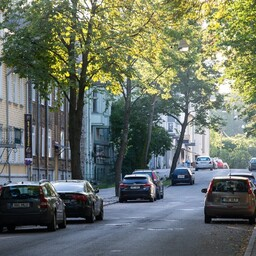 На улице Койдула в Кадриорге соберутся писатели.