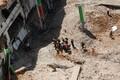 Tel Avivis varises kokku ehitamisel olev autoparkla.