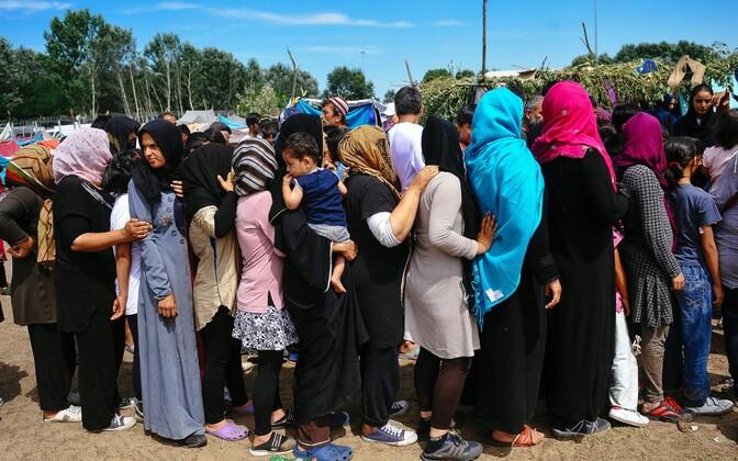 Põgenikud Serbia-Ungari piiril Horgoses asuvas migrandilaagris.