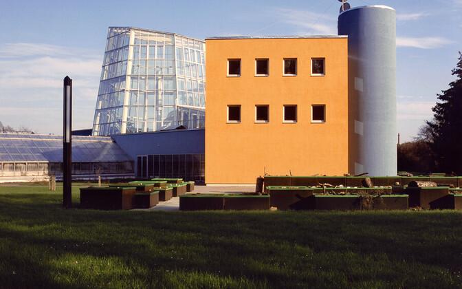 Foto Arne Maasiku Tallinna botaanikaaia palmimaja seeriast.