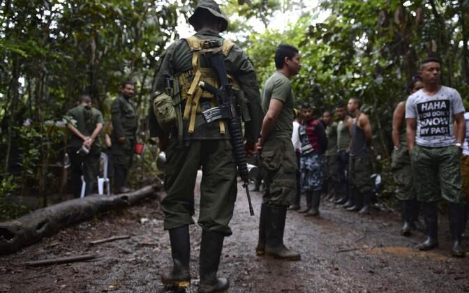 FARCi võitlejad.