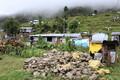 Maavärina epitsentrile lähedased külad koosnevad siiani valdavalt plekkonnidest. Kuna sellised metallplaadid on odavad ja neid on kerge transportida, oli see põhiline esmaabi, mida Nepali inimesed peale maavärinat said. Igasse külla toodi metallplaate, et