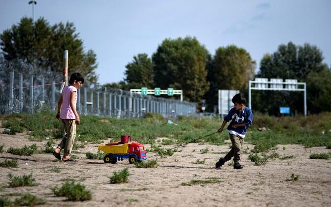 Migrandid Serbia-Ungari piiri lähistel.