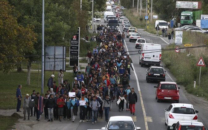 Sajad migrandid asusid Belgradist Ungari piiri poole teele.