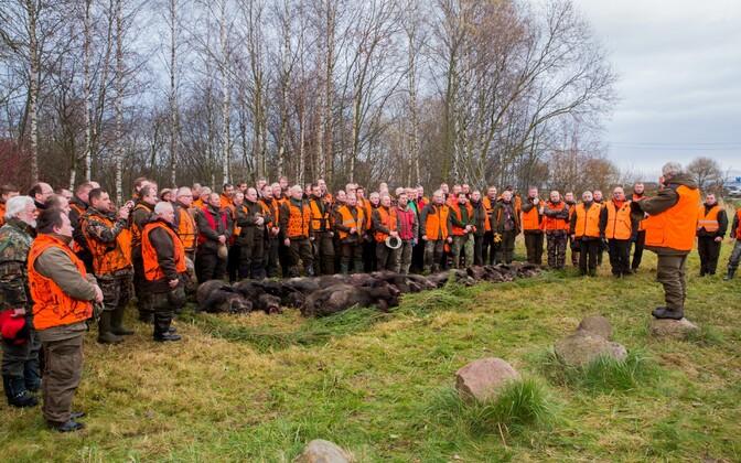 Metsseajaht Paljassaare poolsaarel 2015. aasta sügisel.