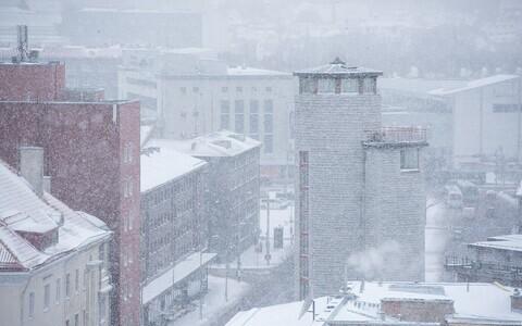 Snowy Tallinn.