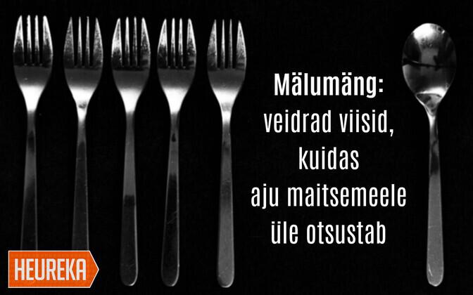 Toidu maitset võib tõlgendada muljena toidu kohta: tihti otsustab aju juba enne maitsmist, kuidas meile toit tundub. Seda nõude kuju ja värvi, aga ka toidu serveerimise põhjal.