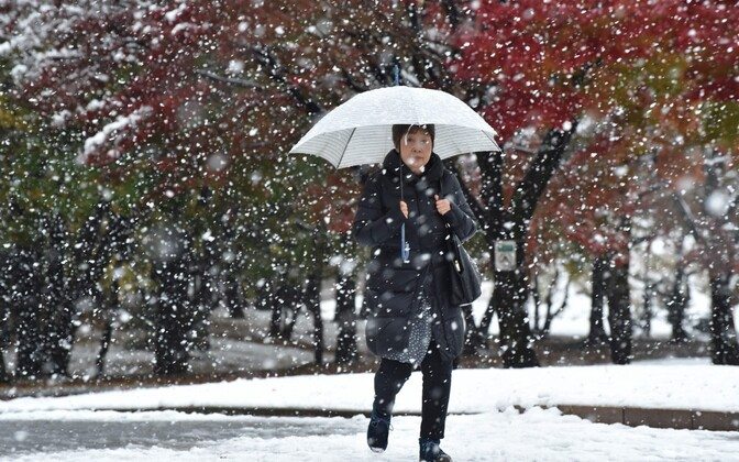 Последний раз снегопад в ноябре в Токио был зафиксирован в 1962 году.