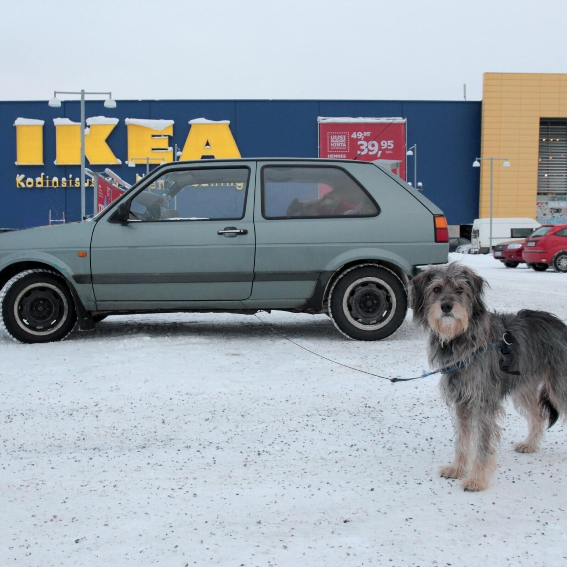 Ikea To Open Future Store In Tallinn Economy Err