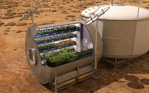 Kunstniku nägemus tulevase mehitatud Marsi baasi viljaaiast. NASA plaanid näevad ette astronautidele hädavaliku värske toidu kasvatamist nii kosmoselaevades kui teistel planeetidel.