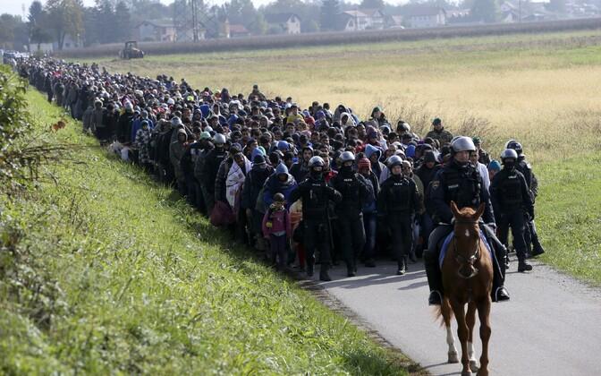 Vaatepilt Sloveenias rändekriisi kõrghetkel 2015. aasta oktoobris.