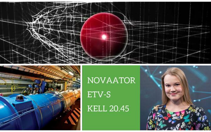 Novaator 15. veebruaril.