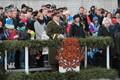 Парад по случаю 99-й годовщины ЭР на площади Вабадузе в Таллинне.