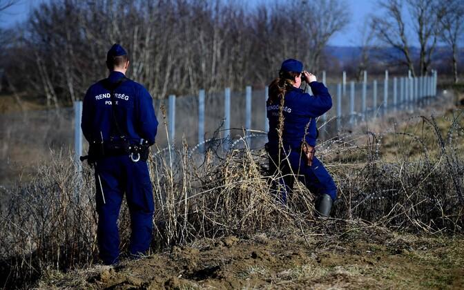 Politseinikud Ungari-Horvaatia piiril patrullimas.