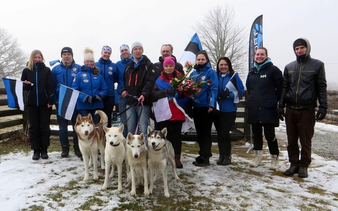 Ülle Aaslav-Kaasik and her Siberian Huskies (center) welcomed home to Paldiski on Sunday following her championship win in Sweden. March 12, 2017.