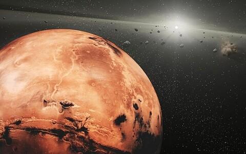 Marss kunstniku nägemuses.