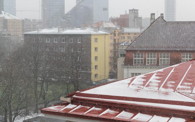 Snowy weather in Tallinn, late April 2017.