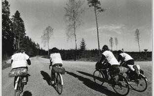 Roheliste rattaretk