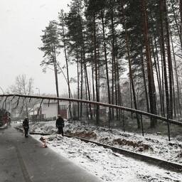 Последствия шторма ликвидируют в том числе и спасатели.