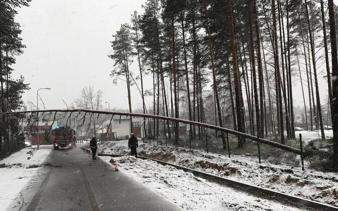 A Rescue Board unit working to clear a street in Tallinn, Jan. 7, 2018.