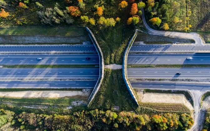 A wildlife crossing over Tallinn-Tartu Highway located in Kolu village, Harju County. Sept. 26, 2016.