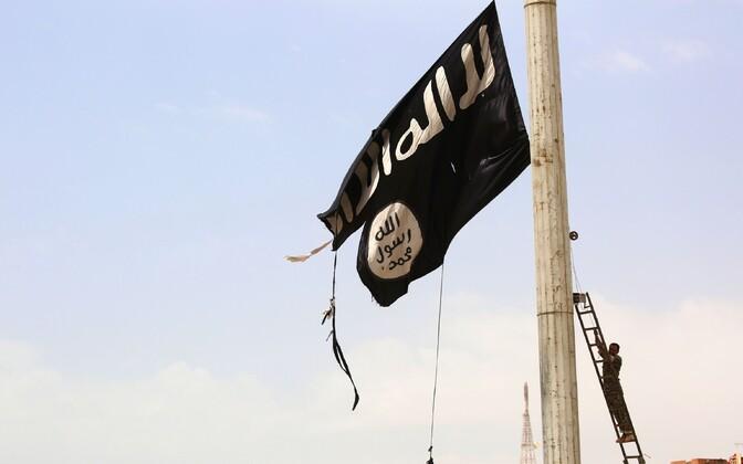 Süüria Demokraatlike Jõudude (SDF) liige langetamas Tabqas ISIS-e lippu.