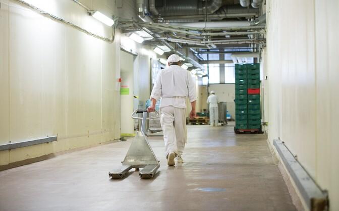 Работники требуют к лету повысить брутто-зарплату до 5 евро в час.