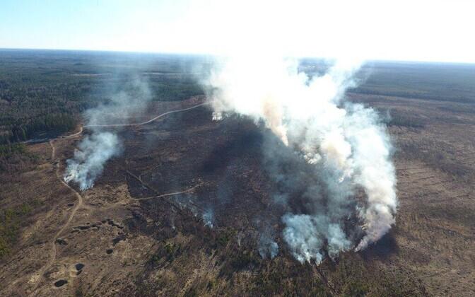 Wildfire in Kuusalu, May 5, 2017.