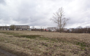 Намеченный под строительство парка пустырь.