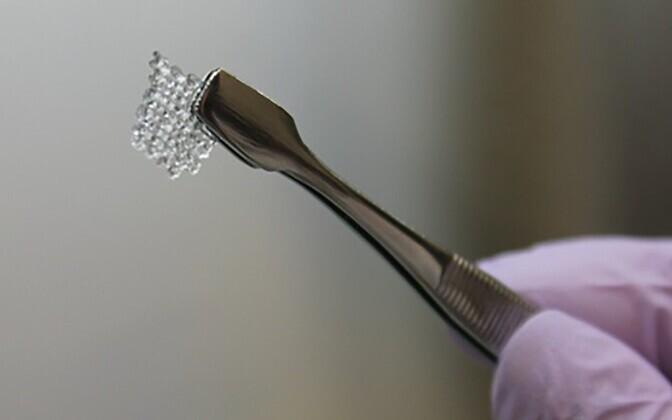 3D-prinditud tehismunasarja ehitamiseks kasutatud sõrestik.
