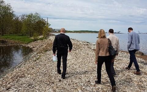 Инспекторы осмотрели всю прибрежную зону.
