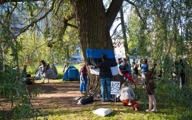 Since Saturday morning, demonstrators have camped out and spent time defending the 100-year-old white willow from being cut down.