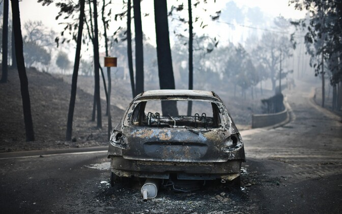 Metsapõleng Portugalis.