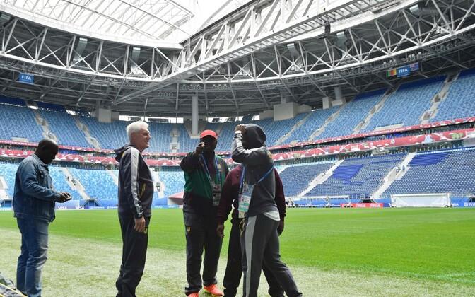 Kameruni jalgpallikoondise taustajõud Krestovski staadionil. Vasakult teine peatreener Hugo Broos.