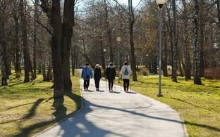 В настоящее время территория бывшего кладбища является парком.