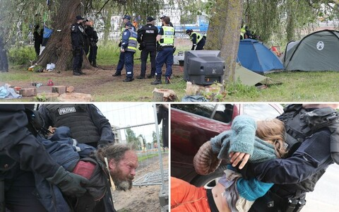 Police removing activists from the scene of the Haabersti willow on Tuesday morning. June 27, 2017.